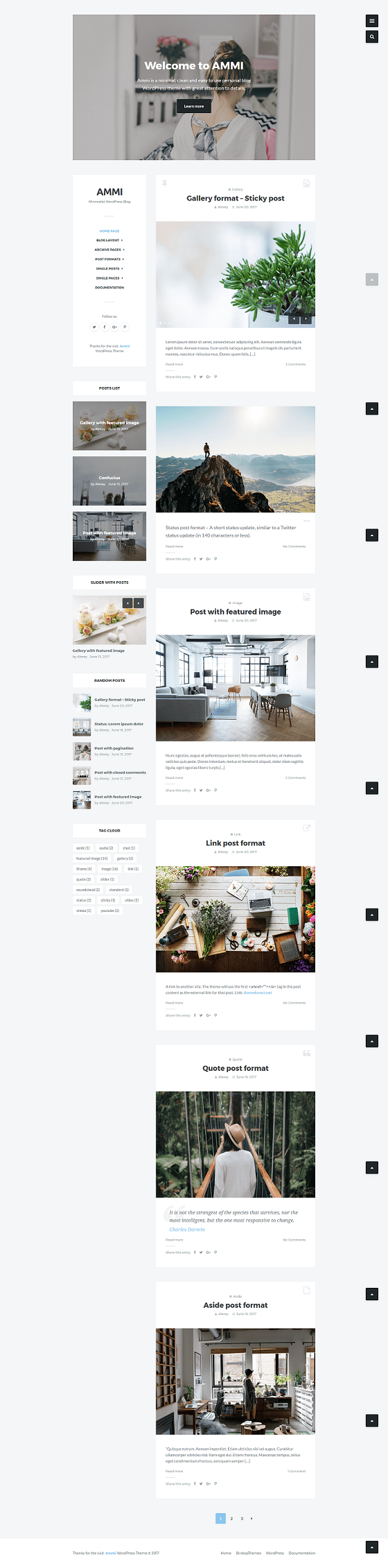 Ammi – Most Popular Minimalist Word press Blog Theme