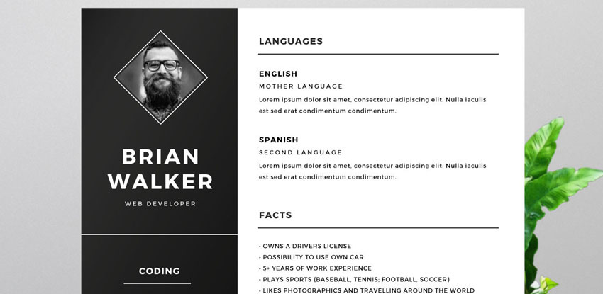 Free Resume Template for Word Photoshop & Illustrator