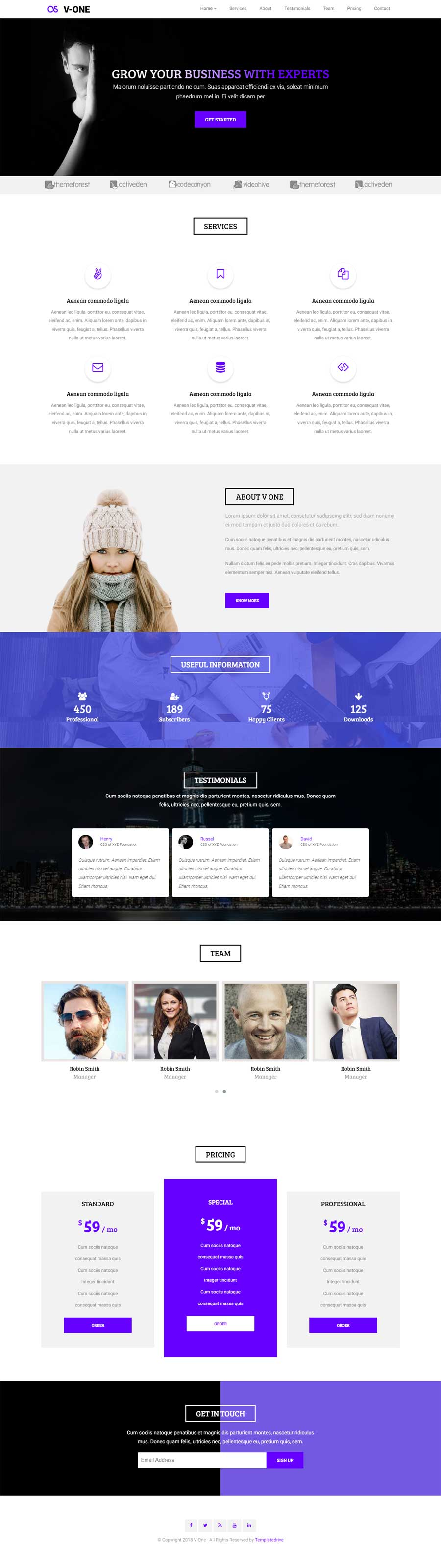 Vone Responsive Business Landing Page Template